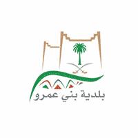 بلدية بني عمرو