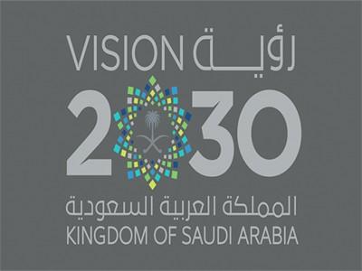 منصة التوظيف 2030